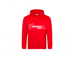 dancewise studios hoodie for kids and adults